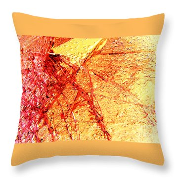 Throw Pillow featuring the photograph Festival Of Light by Kristine Nora