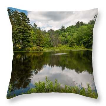Fetch Throw Pillow