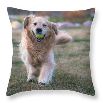 Fetch Throw Pillow