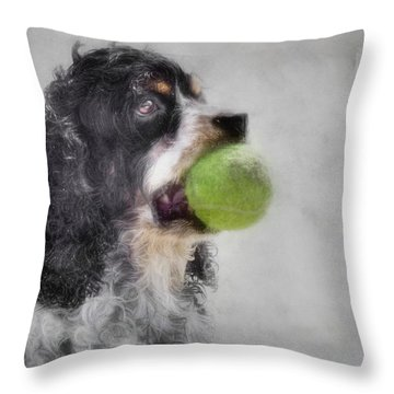 Throw Pillow featuring the photograph Fetching Cocker Spaniel  by Benanne Stiens