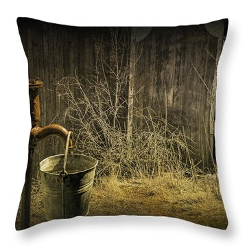 Fetching Water From The Old Pump Throw Pillow