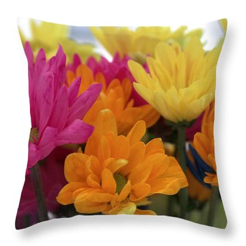 Ff-22 Throw Pillow