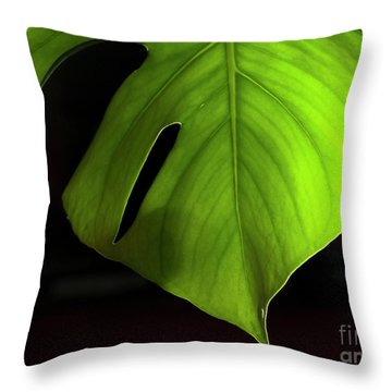 Fhgreen Throw Pillow