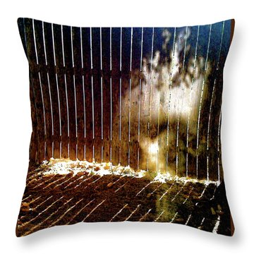 Backyardvisit Throw Pillow