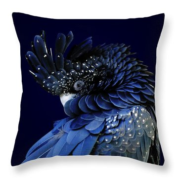 Fibonacci Cockatoo Throw Pillow