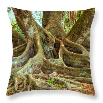 Ficus Roots Throw Pillow