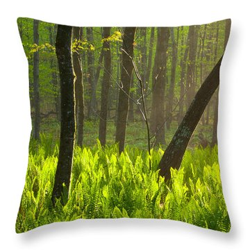 Fiddle Me This Throw Pillow