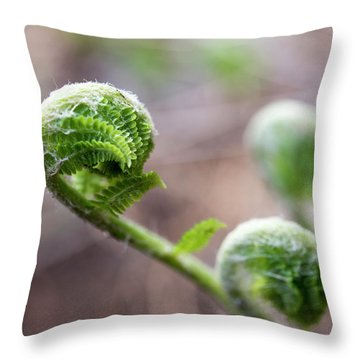 Fiddleheads Throw Pillow