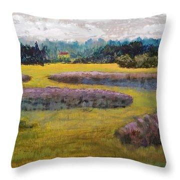 Fiddlers Ridge Marsh Throw Pillow by Peter Senesac