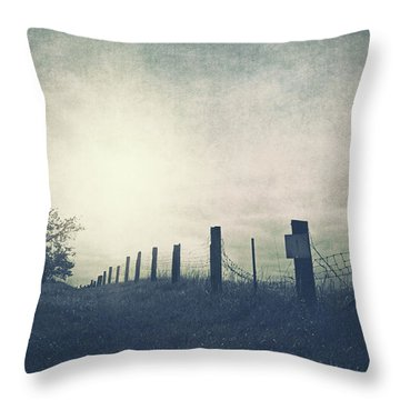 Field Beyond The Fence Throw Pillow