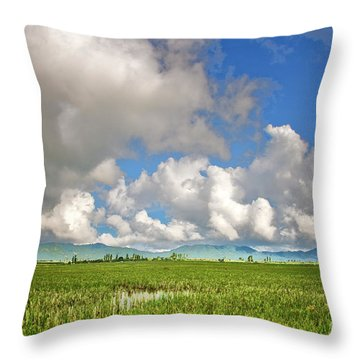 Throw Pillow featuring the photograph Field by Charuhas Images
