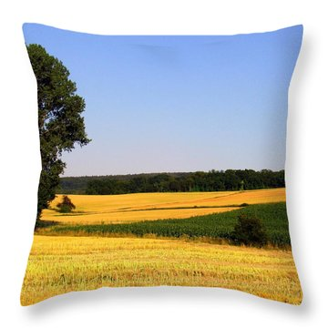 Field Flow Throw Pillow