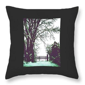 Field Gate Throw Pillow by Anne Kotan