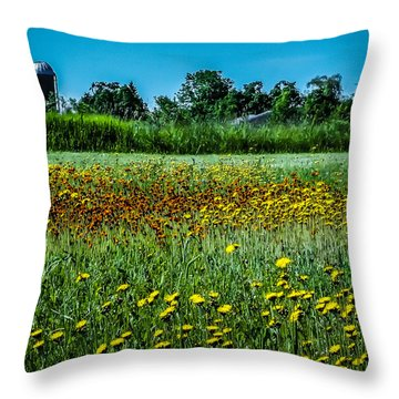 Field In June Throw Pillow
