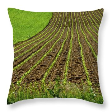 Field Lines And Green Throw Pillow