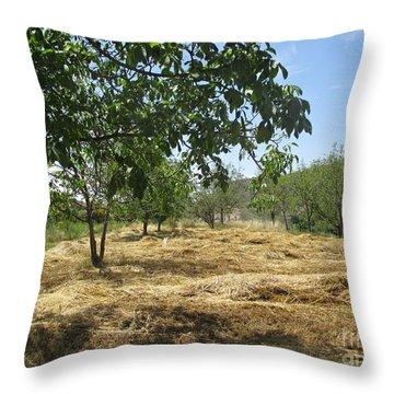 Field Near Busquistar Throw Pillow