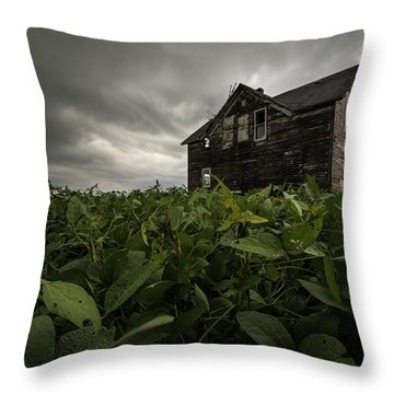 Throw Pillow featuring the photograph Field Of Beans/dreams by Aaron J Groen