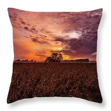 Field Of Beans Throw Pillow