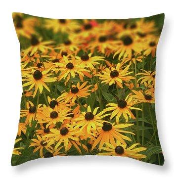 Field Of Black-eyed Susans Throw Pillow