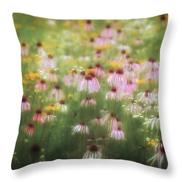 Field Of Coneflowers 5x6 Throw Pillow by James Barber