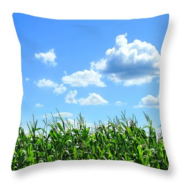 Field Of Corn In August Throw Pillow