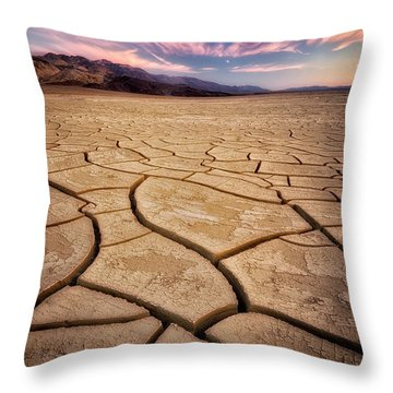 Field Of Cracks Throw Pillow by Nicki Frates