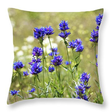 Throw Pillow featuring the photograph Field Of Dreams by Chad Dutson