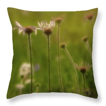 Field Of Flowers 2 Throw Pillow