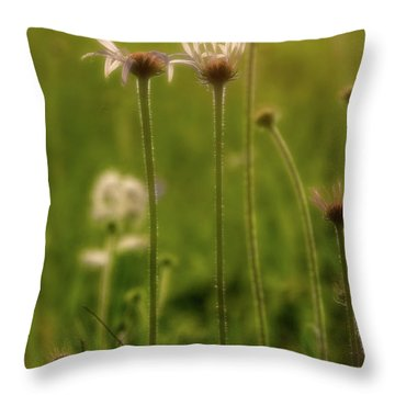 Field Of Flowers 3 Throw Pillow