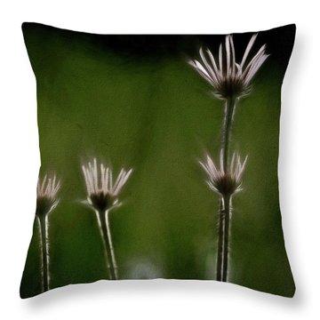 Field Of Flowers 4 Throw Pillow