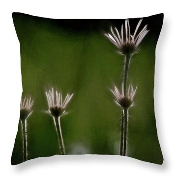 Field Of Flowers 4 Throw Pillow