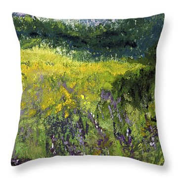 Field Of Flowers Throw Pillow by David Patterson