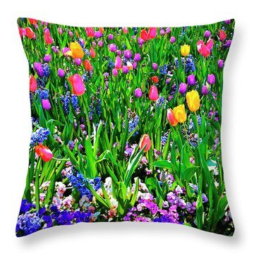 Field Of Flowers Throw Pillow by Tamyra Ayles