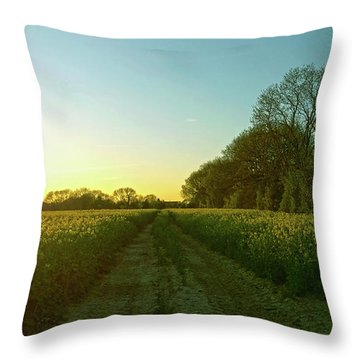 Throw Pillow featuring the photograph Field Of Gold by Anne Kotan