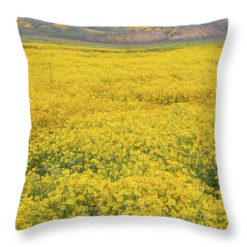 Throw Pillow featuring the photograph Field Of Goldfields by Marc Crumpler
