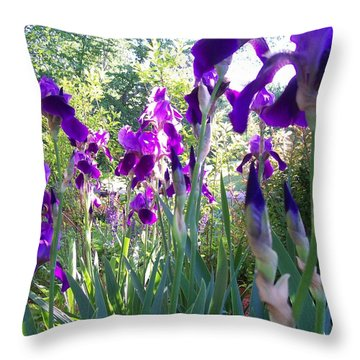 Field Of Irises Throw Pillow