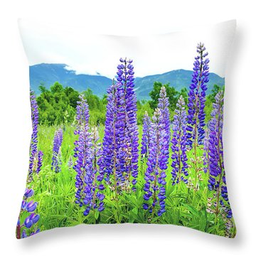 Field Of Purple Throw Pillow by Greg Fortier