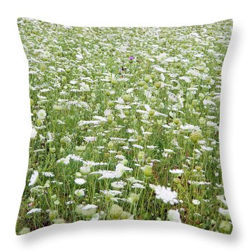 Field Of Queen Annes Lace Throw Pillow
