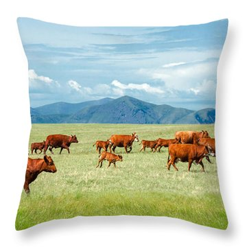 Field Of Reds Throw Pillow