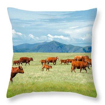 Field Of Reds Throw Pillow