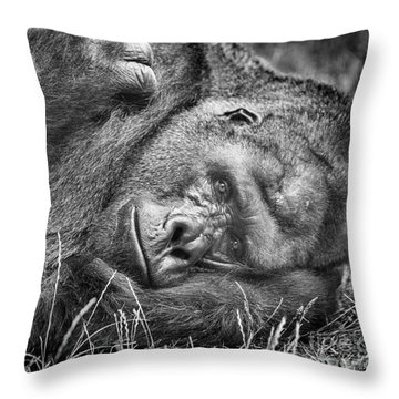 Throw Pillow featuring the photograph Field Of Sadness by David Millenheft
