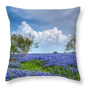Field Of Texas Bluebonnets Throw Pillow