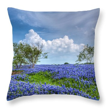 Field Of Texas Bluebonnets Throw Pillow