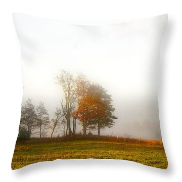 Field Of The Morn Throw Pillow