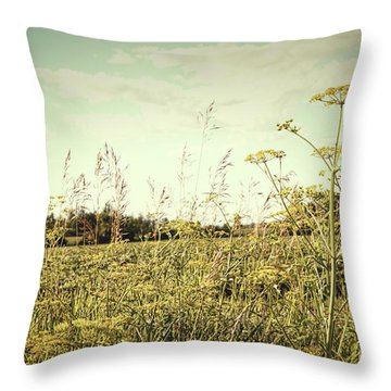 Field Of Wild Dill In The Afternoon Sun  Throw Pillow