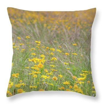 Field Of Yellow Flowers In A Sunny Spring Day Throw Pillow