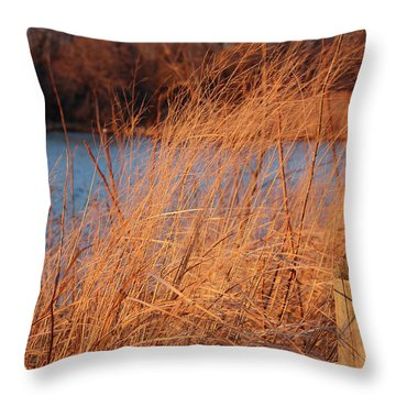 Amber Brush On The River Throw Pillow
