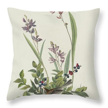 Field Sparrow Throw Pillow by Rob Dreyer