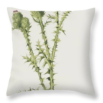 Field Thistle Throw Pillow