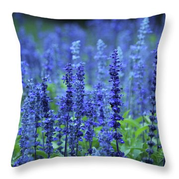 Fields Of Blue Throw Pillow